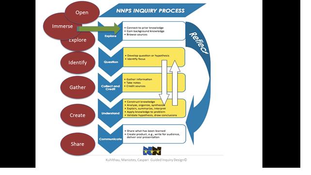 nnpsinquiry-model